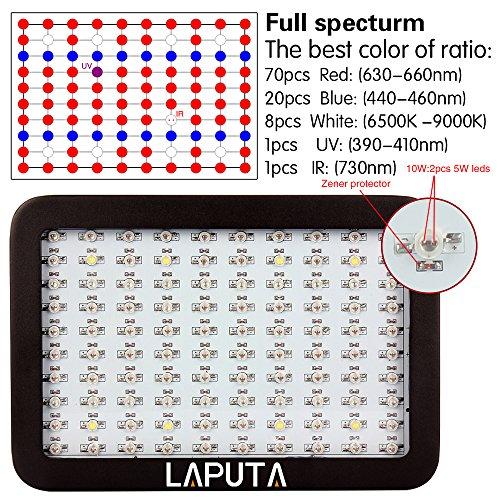 800w schwarz doppel chips panel led grow licht full spectrum pflanzenlampe laputa wachsen lampe. Black Bedroom Furniture Sets. Home Design Ideas