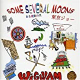 Some Several Moons By Wigwam (2005-05-30)