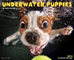 Underwater Puppies 2015 Wall Calendar