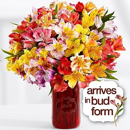 Your Neighborhood Florist – Theshopstation Online – Same Day Flower Delivery – Fresh Flowers – Wedding Flowers – Birthday Flowers