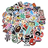 Laptop Stickers [100 pcs], Bezgar Car Motorcycle Bicycle Luggage Decal Graffiti Skateboard Stickers for Laptop Bumper- Random Sticker Pack
