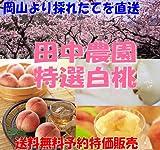 【送料無料産地直送】岡山 田中農園の特選白桃 4~6玉約1.8kg産地化粧箱入
