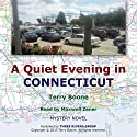 A Quiet Evening in Connecticut: New England Mysteries Volume 2 Audiobook by Terry Boone Narrated by Maxwell Zener