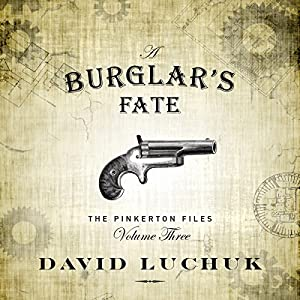 A Burglar's Fate Audiobook