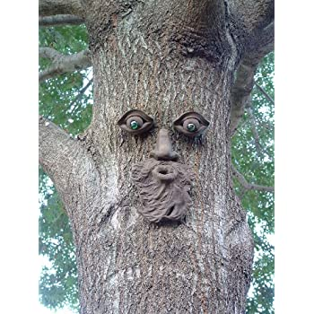 Whistlin Pete Tree Face