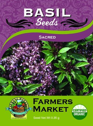 Toland Home Garden Organic Sacred Basil Seeds