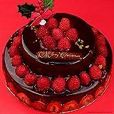 クリスマスケーキ チョコレートケーキ パーティー用2段デコレーション ショコラケーキ ギフト プレゼント