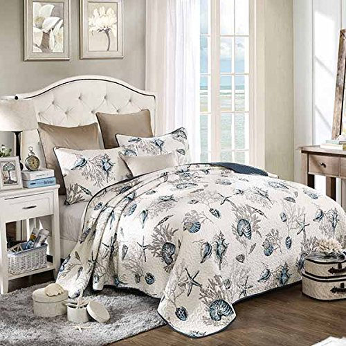 61-6JC6NfPL 36 Favorite Starfish Comforter & Quilt Sets