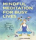 Mindful Meditation for Busy Lives: Active Meditation Throughout the Day Hörbuch von Chris Berlow Gesprochen von: Chris Berlow