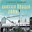 Großer Bruder Zorn Hörbuch von Johannes Ehrmann Gesprochen von: David Nathan