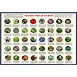 "American Educational Poisonous Plants Poster of The World, 38"" Length x 26-1/2"" Width"