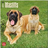BrownTrout Mastiffs 2014 Wall