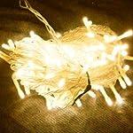 (PMS) 100 LED 12M Warm White String F...