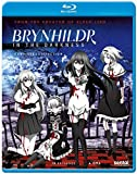 Brynhildr in the Darkness: