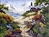 A Walk Through The Dunes by Nancy Wernersbach2 Tile Mural for Kitchen Backsplash Bathroom Wall Tile Mural