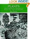 Plants: 2,400 Royalty-Free Illustrati...