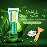 Wall Mending Agent - Waterproof Wall Repair Cream Wall Crack Nail Area Repair Agent,Instantly Seal and Repair Broken Surfaces Mending Agent (Green/250G) (Color: Green/250G, Tamaño: One Size)