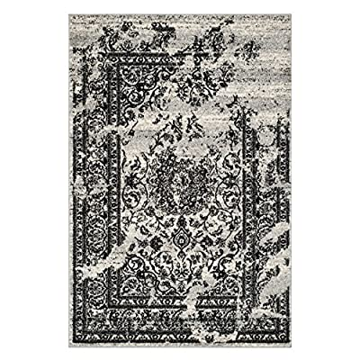 Safavieh Adirondack Collection ADR101A Silver and Black Area Rug