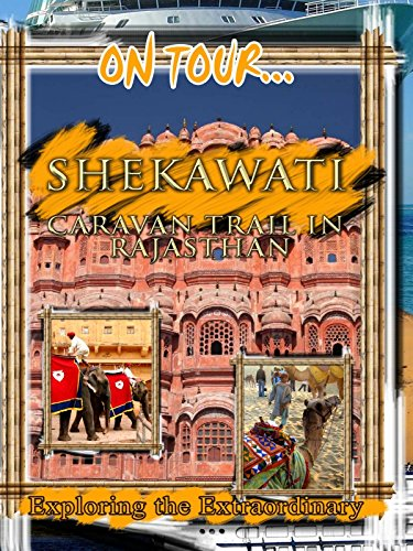 On Tour... SHEKHAWATI