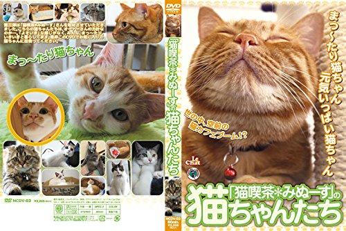 「猫喫茶*みぬーす」の猫ちゃんたち [DVD]