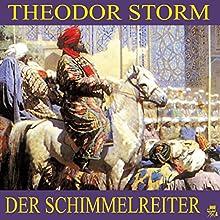 Der Schimmelreiter (       ungekürzt) von Theodor Storm Gesprochen von: Simon Pichler