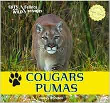 Cougars / Pumas (Cats of the Wild / Felinos Salvajes