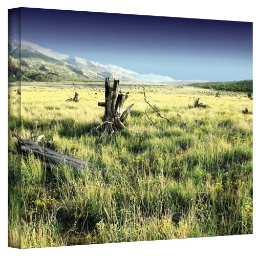 Art Wall Fall Creeps Wrapped Canvas Art by Mark Ross, 14 by 18-Inch