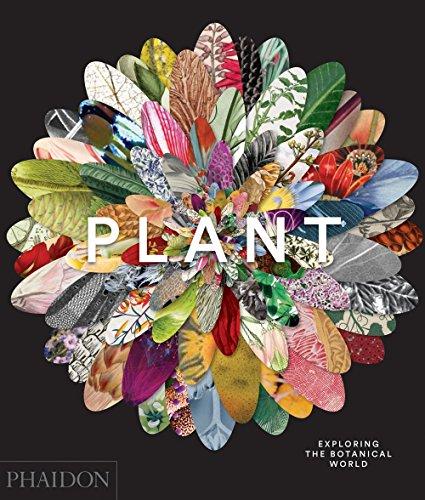 Plant-Exploring-the-Botanical-World