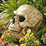 Design Toscano Sinister Simon Giant Skull Halloween Sculpture