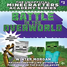 Battle in the Overworld Audiobook by Winter Morgan Narrated by Nicol Zanzarella