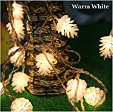 Tanbaby 5M Led 20 Pinecone Lamp Fairy String Light for Christmas Wedding Party Nightclub Lights(warm)