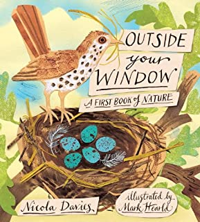 Book Cover: Outside Your Window: A First Book of Nature