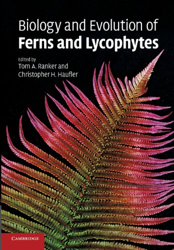 Biology and Evolution of Ferns and Lycophytes