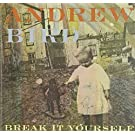 Break It Yourself (Deluxe DVD Edition)
