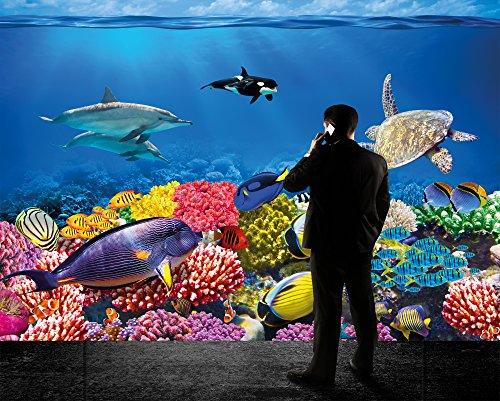 Fototapete Unterwasserwelt : Unterwasser Korallenriff Fototapete – Aquarium Fische Meer Wandbild