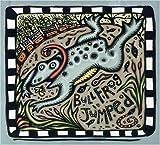 echange, troc Various Artists - Bullfrog Jumped: Children's Folksongs