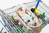 Binxy Baby Shopping Cart Hammock (Gray and Aqua Quatrefoil)