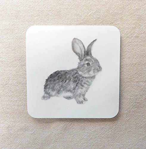 daisy-rabbit-coaster