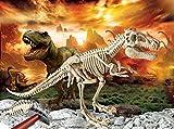 Clementoni 69491.4 - Galileo, Ausgrabungs Set, Das Skelett des Giganten T Rex, mehrfarbig hergestellt von Clementoni