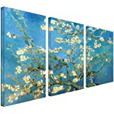 Art Wall 3-Piece Almond Blossom Gallery Wrapped Canvas Art by Vincent Van Gogh, 54 by 36-Inch