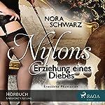Erziehung eines Diebes (Nylons - Erotische Phantasien 6) | Nora Schwarz