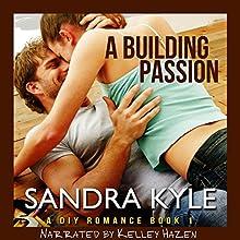 A Building Passion: DIY, Book 1 | Livre audio Auteur(s) : Sandra Kyle Narrateur(s) : Kelley Hazen