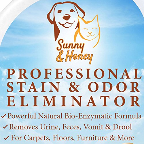 Enzyme Cleaner, Pet Stain Remover, Odor Eliminator, Best Carpet Stain Remover, Pet Odor Eliminator, Stain Remover, Odor Neutralizer, Cat Urine Smell - Cleaner - Eliminator, Better Than - Natures Miracle, Sunny And Honey front-2720