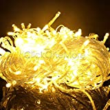 Proxima Direct? 100/200/300/400/500 LEDs String Fairy Lights for Christmas Tree Party Wedding Events Garden (8 Operation Modes, memory function) - Top Quality (Warm white, 500 LEDs)