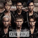 【早期購入特典あり】WILD WILD WILD(DVD付)(アナログ盤LPジャケットサイズポスター付)