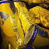 レッドブル・サマーエディション250ML × 24缶(2ケース)