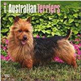 BrownTrout Australian Terriers 2014 Wall