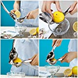 Lemon Squeezer,Wilkwish Professional Lemon Juicer Press,18/10 Stainless Steel,Citrus Juicer