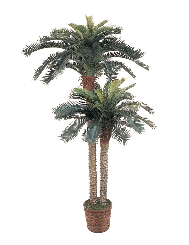 Silk Palm Trees Palm Double Potted Silk