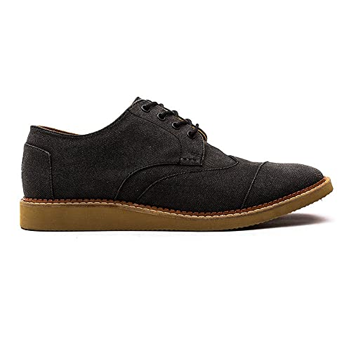 Toms Brogues Ash Aviator Twill Mens